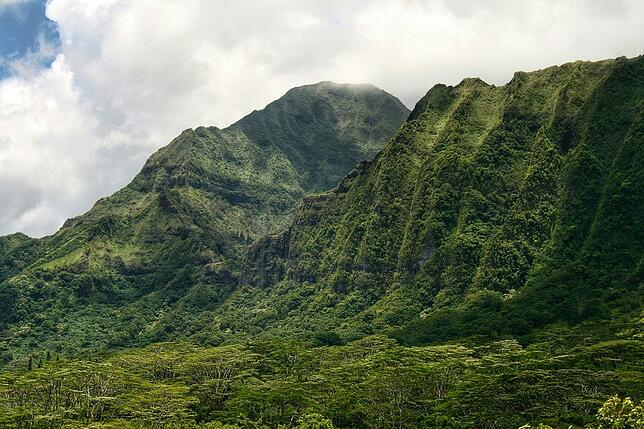 Hawaii landscape