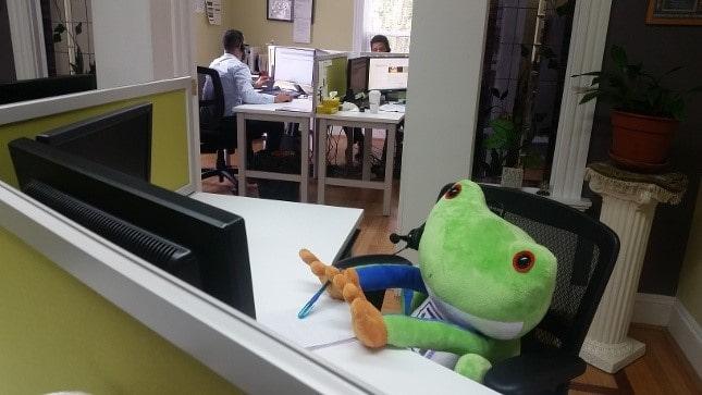 stuffed terpii in iti office