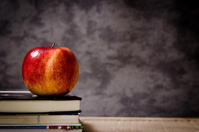 School black board with books and an apple